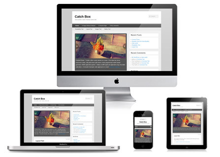 catch-box-responsive